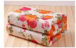 Electric Single Heated Blanket 220v Warm Winter Soft Comfort